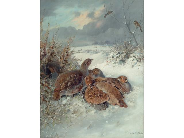 William Woodhouse (1857-1935) Partridges in a snowy landscape 52 x 39cm.