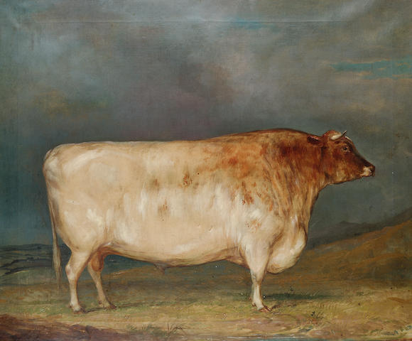 19th Century English School A bull in a landscape 63.5 x 76.2cm. (25 x 30in.)
