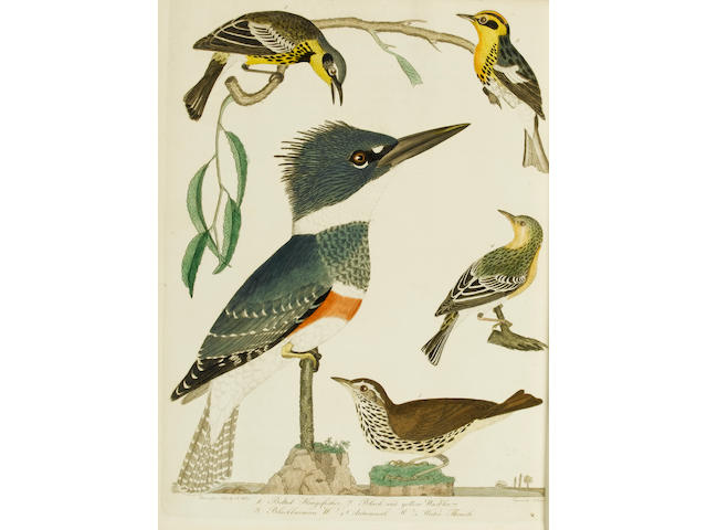 WILSON (ALEXANDER) American Ornithology; or the Natural History of the Birds of the United States, 9 vol. in 3