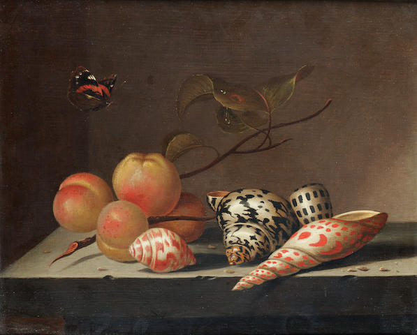 Attributed to Evert van Aelst (Delft 1602-1657) Peaches and shells on a stone ledge with a Red Admir