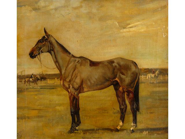 """Anna Colmore (1889-1973) """"Roman Hackle"""" 46 x 50cm (18 x 19¾in)."""