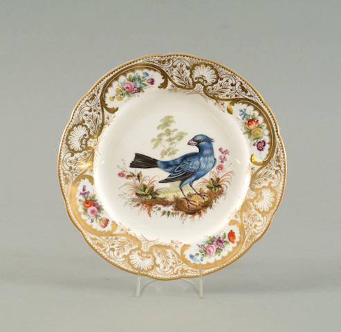 A Nantgarw plate from the Mackintosh Service circa 1818-20
