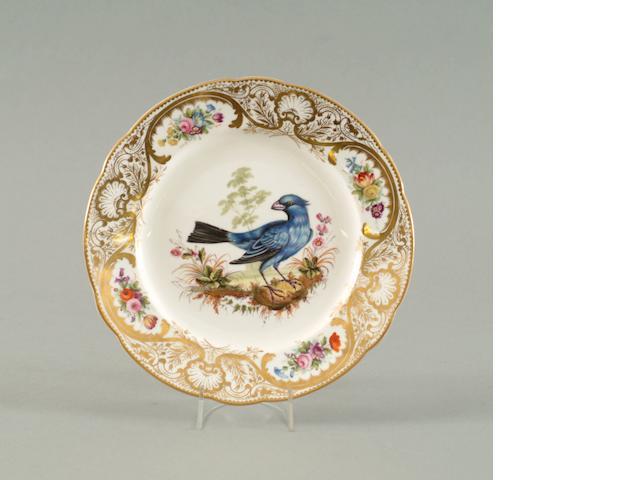 A Nantgarw plate from the Mackintosh Service circa 1818-20