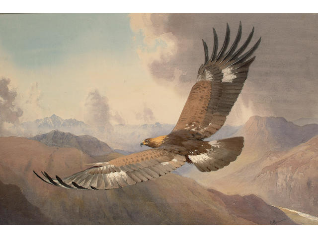 John Cyril Harrison (British, 1898-1985) The Golden Eagle.
