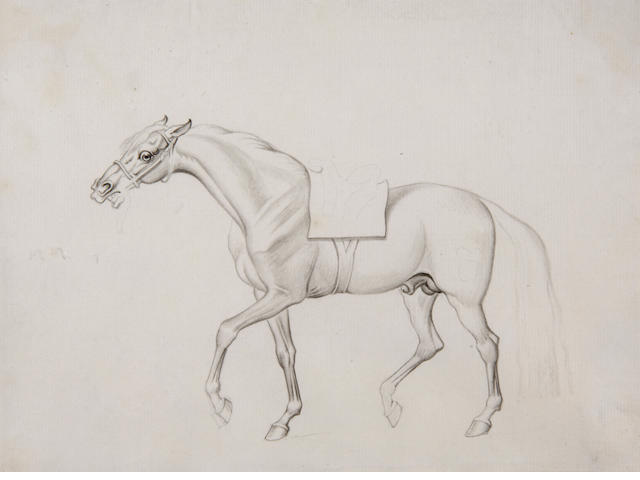Attributed to James Seymour  (c.1702-1752) Study of a racehorse