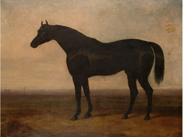 Charles Hancock (British, 1795-1868) Portrait of a black stallion, believed to depict 'Sir Hercules'.
