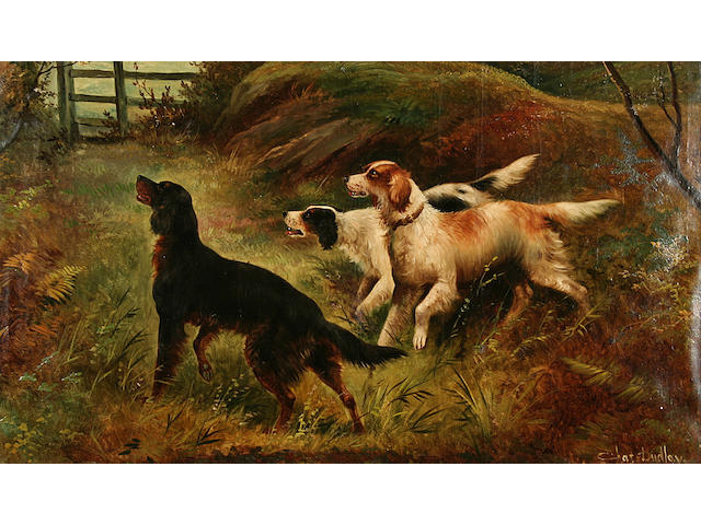 Charles Dudley Gun dogs in a woodland,