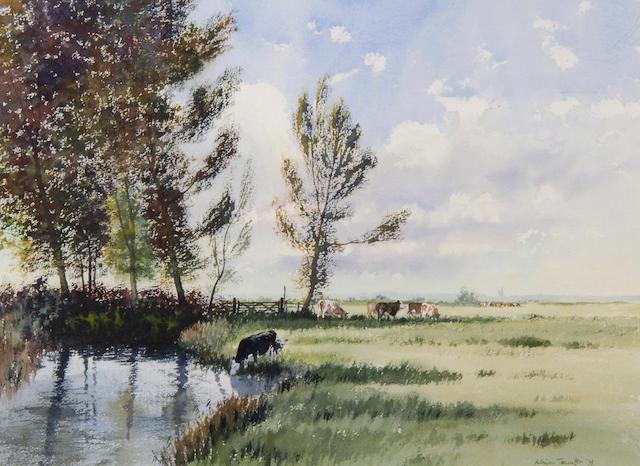 Adrian Taunton (Contemporary) Summer pastures 39.5 x 53cm (15 1/2 x 21in).