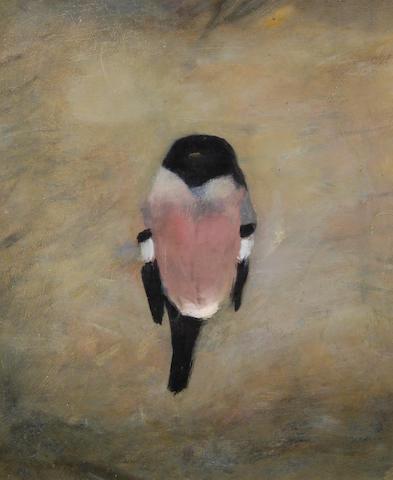 Mary Newcomb (b.1922) Bullfinch 48.5 x 41cm (19 x 16in).