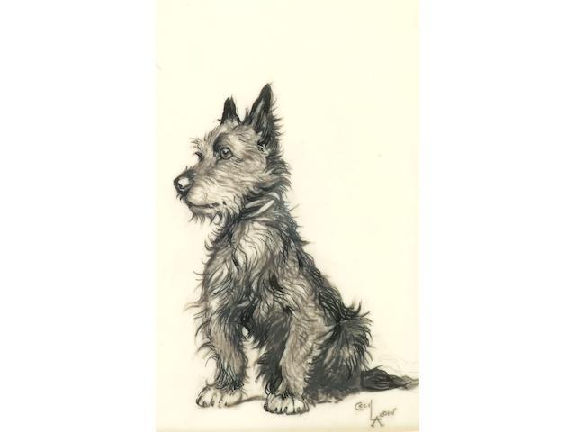Cecil Aldin (1870 - 1935) A Cairn Terrier,