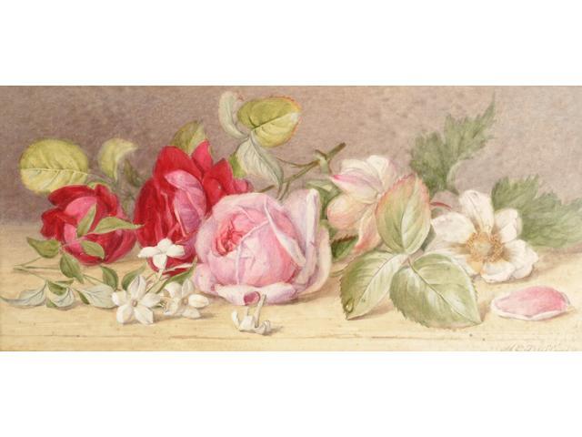 Mary Elizabeth Duffield (British, 1819-1914), 'Roses and Jasmine', 13.5 x 29cm.