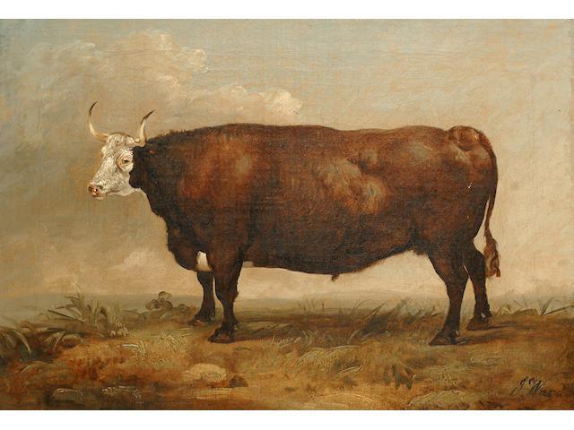 James Ward (British, 1769-1859) A bull in a landscape.
