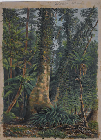 E. Sandys (British, 19th century) A native standing in jungle, Solomon Islands 36 x 26 cm. (14¼ x 10