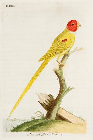 LATHAM (JOHN) General History of Birds, 11 vol. (including index)