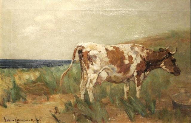 John Carlow RSW (1850-1934) Grazing on the dunes,