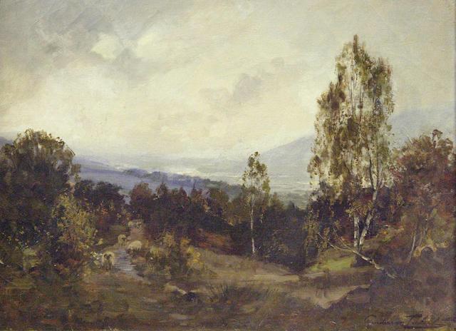 J A Henderson Tarbet (c.1865-1937) Sheep on a hillside,