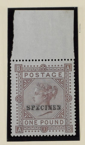 1882-83 wmk. Anchor on blued paper: £1 brown-lilac AB overprinted Specimen type 9 (S.G.Spec.J127t), marginal example from the top of the sheet, a few gum bends, very fine and fresh unmounted mint, R.P.S. Certificate (2001).