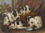 James Henry Beard (American, 1812-1893) King Charles Spaniels in an interior, a pair each 6 x 8 in. (15 x 20.5 cm.)