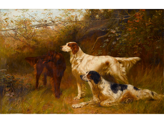 Thomas Blinks Setters (British, 1860-1912)  36 x 55 1/2 in. (91.5 x 141 cm.)