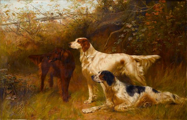 Thomas Blinks Setters (British, 1860-1912)  36 x 55 1/2 in. (91.5 x 141 cm.)
