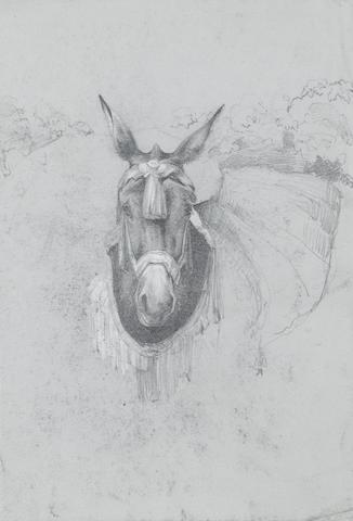 John Frederick Lewis, R.A., P.O.W.S. (1805-1876) A study of a Spanish mule 27.3 x 18.4 cm. (10¾ x 7¼