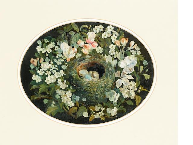 William Cruickshank (British 1848-1922)A bird's nest surrounded by flowers 21.5 x 28.5 cm. (8 1/2 x