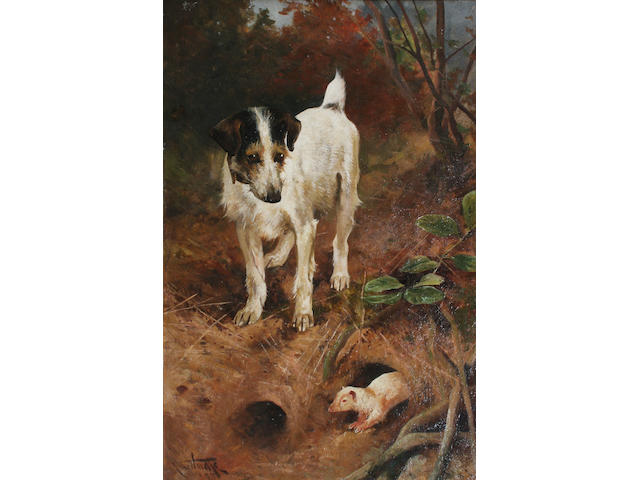 Arthur Wardle terrier & ferret o/c