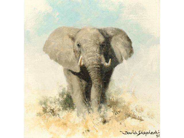 David Shepherd (British, b.1931) Elephant