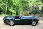 1964 AC Cobra Mark II  Chassis no. CSX2423