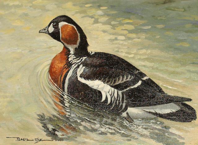 Basil Ede (British, born 1931) Red Breasted Goose