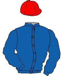 Distinctive Colours: Royal Blue, Red cap