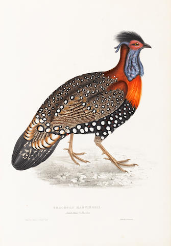 GOULD (JOHN) A Century of Birds from the Himalaya Mountains, FIRST EDITION, FIRST ISSUE