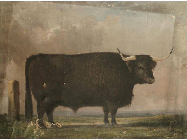 English School, late 19th/early 20th Century A brown bull in a landscape; A grey bull in a landscape each 56 x 76cm (22 1/16 x 29 15/16in) (2).