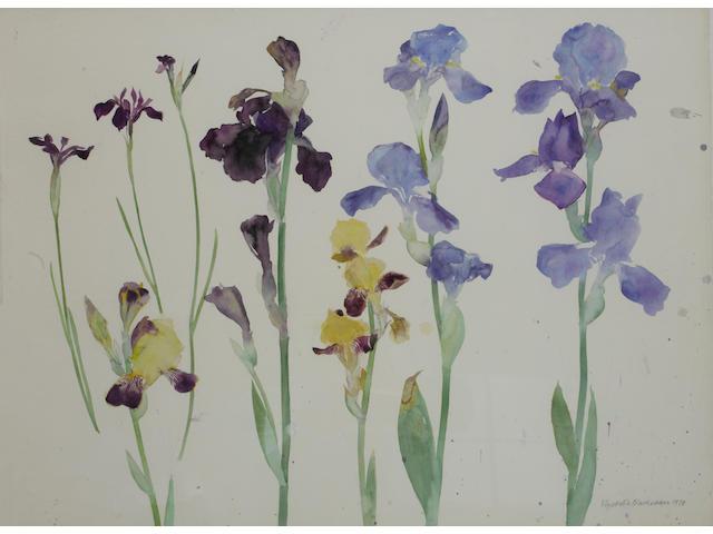 Dame Elizabeth Blackadder, OBE RA RSA RSW RGI DLitt (British, born 1931) Irises