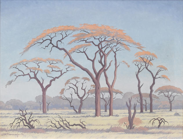 Jacob Hendrik Pierneef (South African, 1886-1957) Acacia trees on the veldt 46 x 61 cm. (18 x 24 in.)