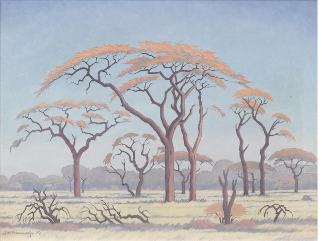 Jacob Hendrik Pierneef (South African, 1886-1957) Acacia trees on the Veldt 46 x 61 cm. (18 x 24 in.