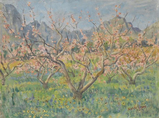 Alfred Neville Lewis (South African, 1895-1972) Cherry blossom trees 30.5 x 40.5 cm. (12 x 16 in.)