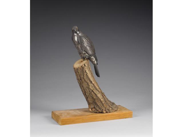 An elegant bronze okimono of a falcon;