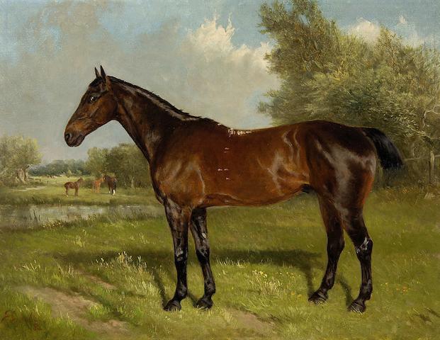 John Duvall (British, 1816-1892) Horse in landscape
