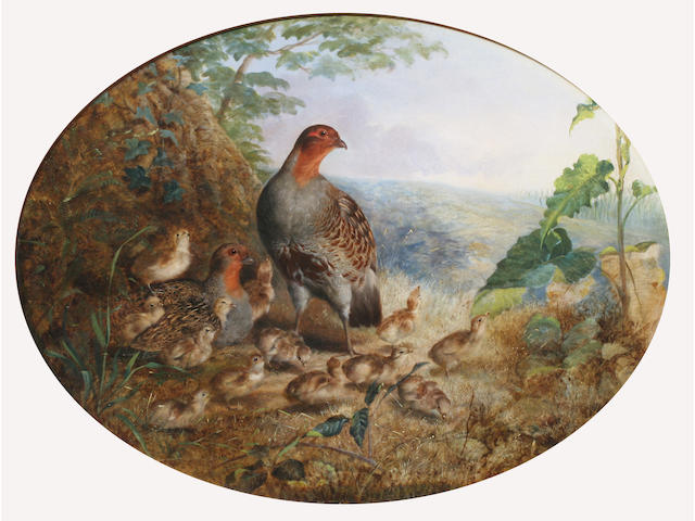 Robert Nightingale (British, 1815-1895) Pair of partridge and young 23.5 x 70.5cm (oval).