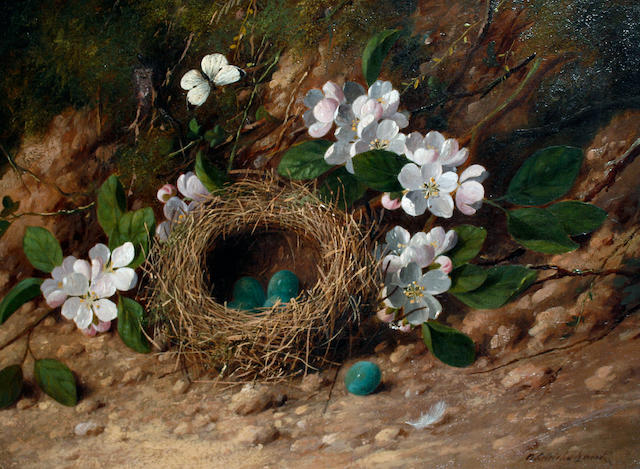 William Cruickshank (British, 1848-1922) Still life of a bird's nest and flowers on a bank