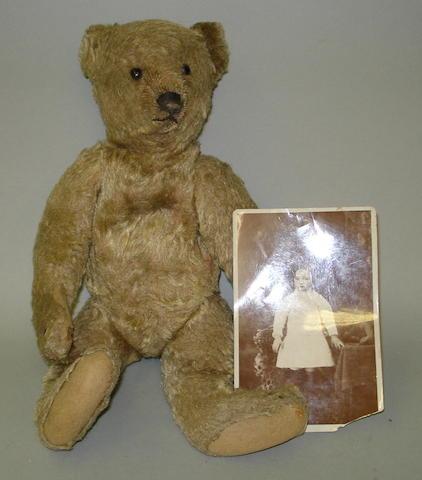 Brown mohair Steiff Teddy bear, German circa 1909