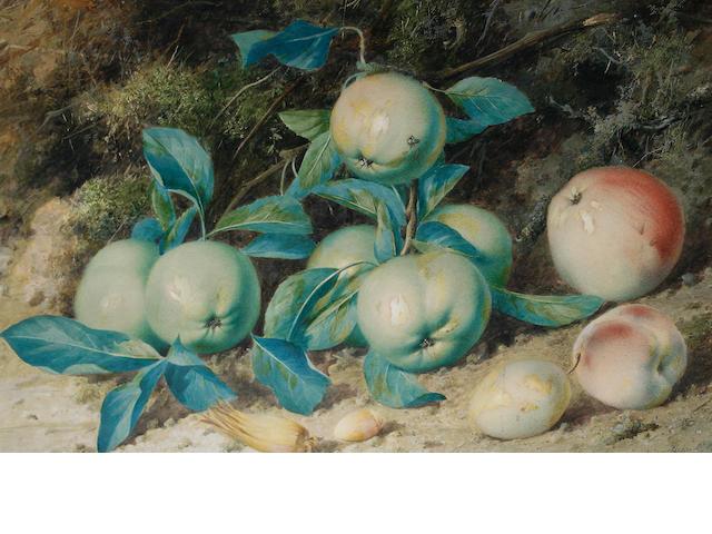 William Cruickshank (British, 1848-1922) Still life of apples and hazelnuts against a mossy bank