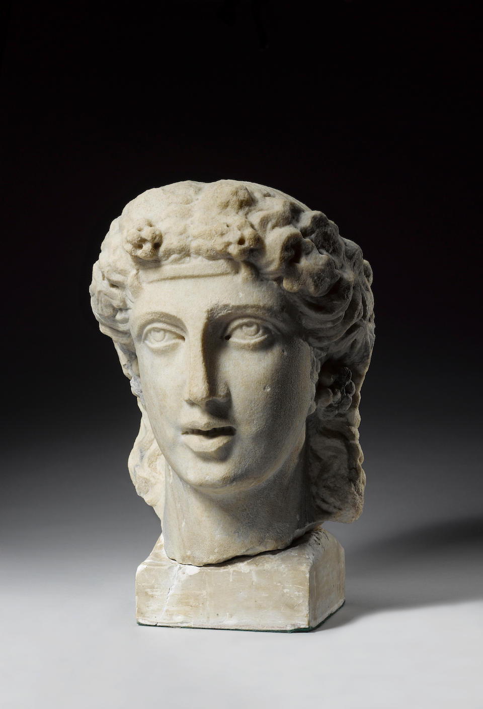 The 'Beth-Shan' Bust; A monumental Roman marble double herm, with a set of six black and white photographic glass plates, mounted on a plinth