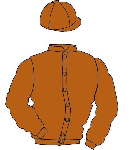 Cherished racing colours, plain terracotta