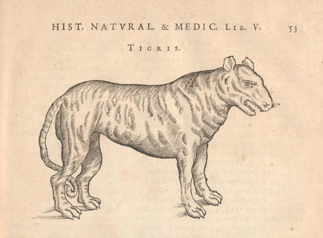 PISO (WILLEM) and others De Indiæ utriusque re naturali et medica libri quatuordecim. Quorum contenta pagina sequens exhibet, 4 parts in one vol.