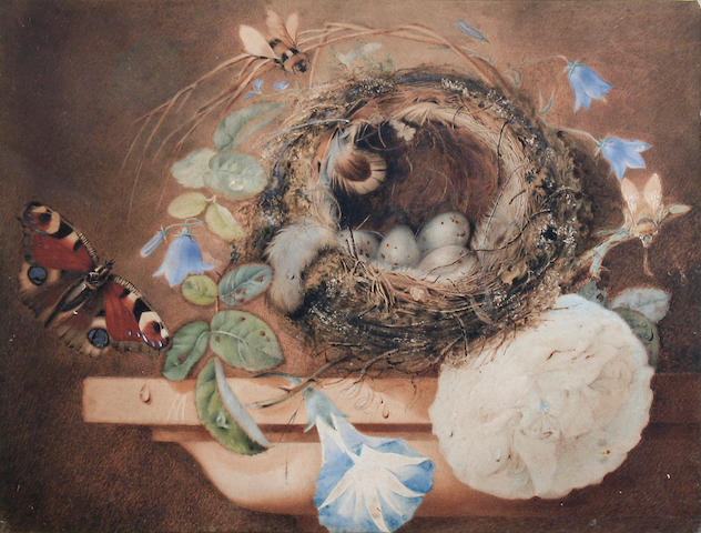 Helen Cordelia  Angell (British, 1847-1884) Still life with birds nest on a ledge,
