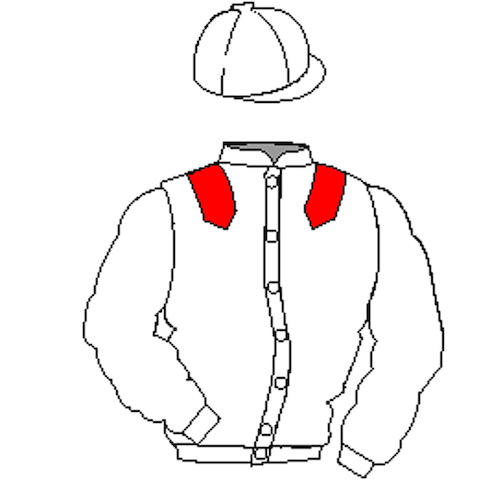 Distinctive Colours: White, Red epaulets, White cap