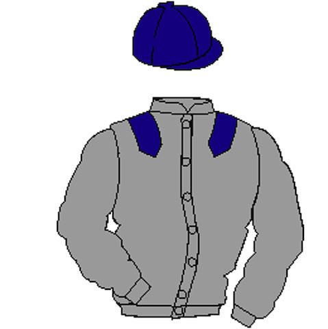 Distinctive Colours: Grey, Purple epaulets and cap