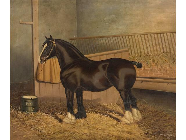 Albert Clark (British, 1821-1909) The Shire Horse 'Queen of Shires' in a stable (Together with two other shire horse portraits by the same hand: 'Aurea' and 'Southgate Charm', together with a similar portrait by J Babbage of 'Marmion II', signed and dated 1892, 52 x 61cm, and another by James Clark, signed and inscribed with address of the artist: 'Starlight'. (5))